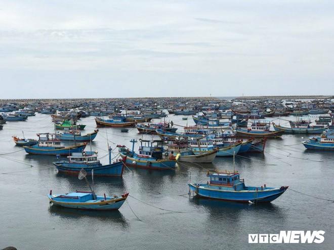 """Bão số 9: Dấu hiệu bất thường"""" ở đảo Phú Quý, hàng nghìn người dân Nha Trang rời làng - Ảnh 1."""