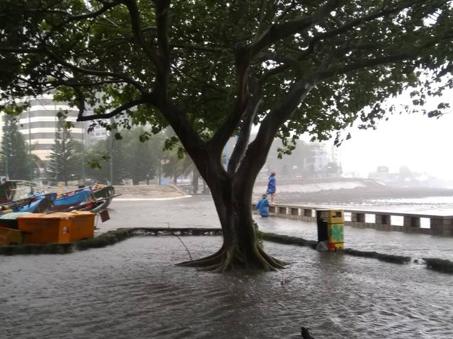 Nhiều ngư dân Vũng Tàu liều lĩnh ra biển kiểm tra tài sản giữa cơn bão số 9 quét qua - Ảnh 4.