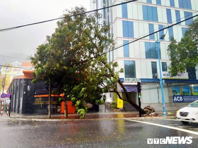 Vì sao những cơn bão muộn đổ bộ vào miền Nam dễ thành thảm họa? - Ảnh 1.