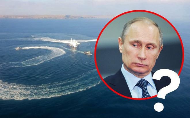 """Tổng thống Putin ở đâu, làm gì trong suốt thời gian Ukraine - Nga """"đụng độ"""" trên biển Đen?"""