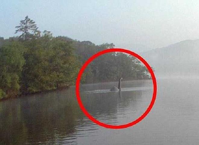Phải ứng xử thế nào nếu bạn bắt được quái vật hồ Loch Ness? - Ảnh 3.