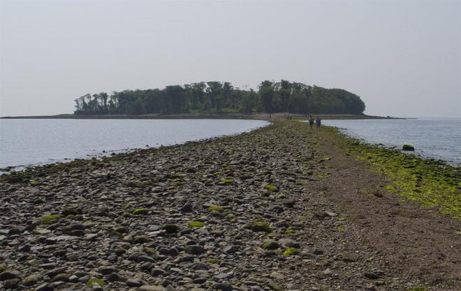 3 hòn đảo được kể là bị nguyền rủa kinh khủng nhất trên thế giới - đảo cuối cùng đến giờ vẫn không ai dám quay lại - Ảnh 4.