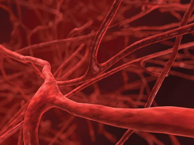 3 thời điểm vàng để chăm sóc dạ dày, tim và mạch máu: Nếu muốn khỏe hãy áp dụng ngay! - Ảnh 4.