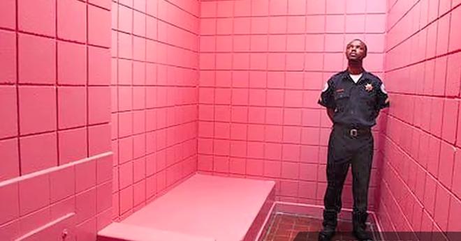 Tại sao Thụy Sỹ có những nhà tù được sơn màu hồng và chỉ dành riêng cho tù nhân cá biệt? - Ảnh 1.