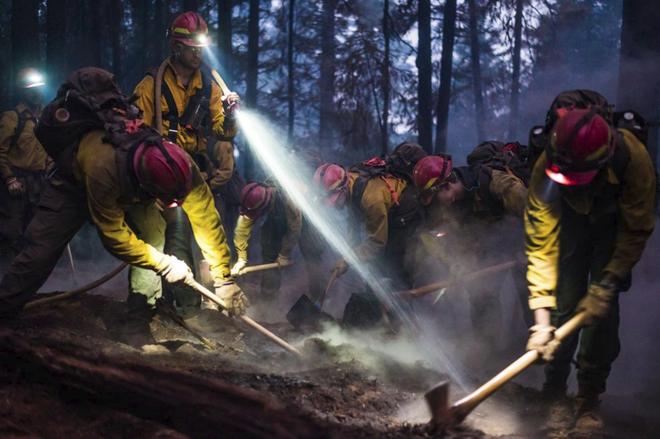 National Geographic tung những bức ảnh đẹp nhất 2018: Hơn 1 triệu bức ảnh khác bị loại! - Ảnh 2.