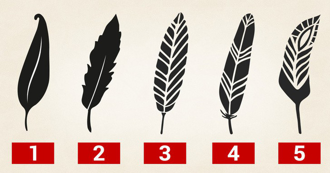 Tố chất lãnh đạo bẩm sinh ẩn tại 1 trong 5 chiếc lông này: Hãy chọn và xem kết quả - Ảnh 1.
