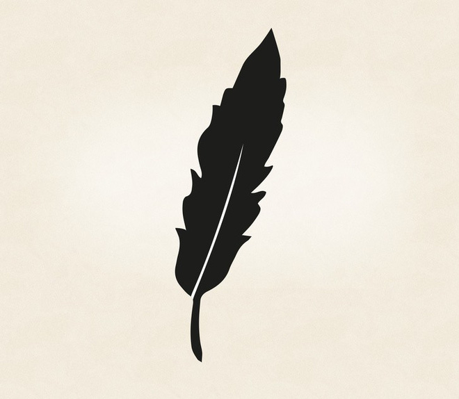 Tố chất lãnh đạo bẩm sinh ẩn tại 1 trong 5 chiếc lông này: Hãy chọn và xem kết quả - Ảnh 3.