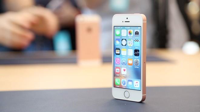 Khai tử iPhone SE là sai lầm lớn nhất của Apple - Ảnh 2.