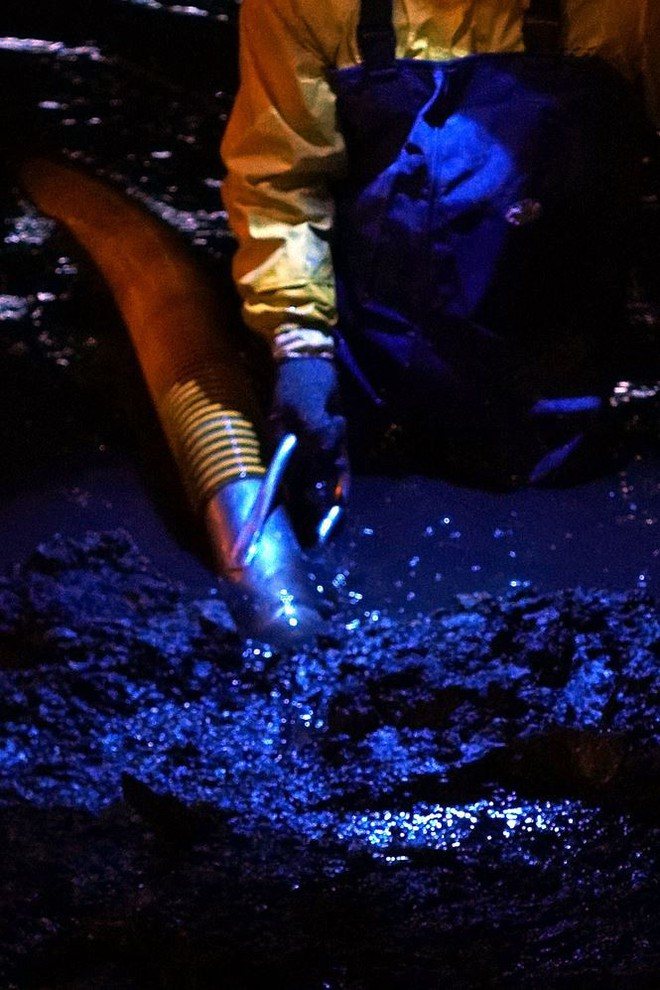 Công nhân ngâm mình trong đêm lạnh nạo vét sông Tô Lịch - Ảnh 5.