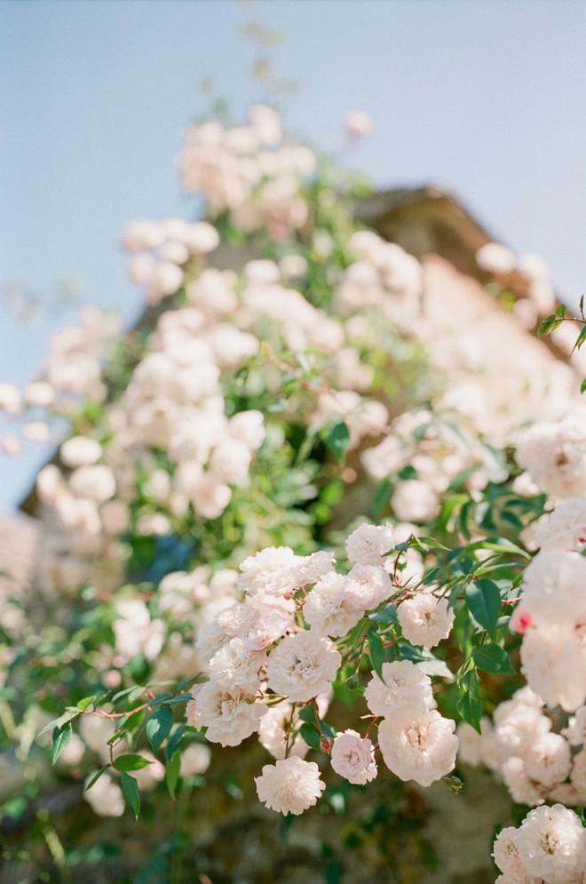Chìm đắm trong thế giới cổ tích mang đậm vẻ cổ kính khi đến thăm ngôi nhà của những người yêu hoa - Ảnh 19.