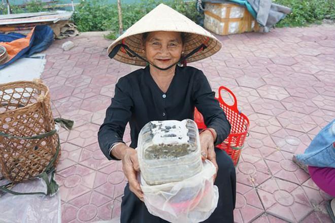 Mùa săn đặc sản nòng nọc ở vùng cao xứ Quảng - Ảnh 7.