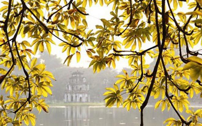 Hà Nội nắng đẹp ngày cuối tuần, sáng sớm có sương mù