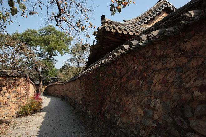 Khám phá Sancheong, vùng đất quê hương của HLV Park Hang-seo - Ảnh 3.