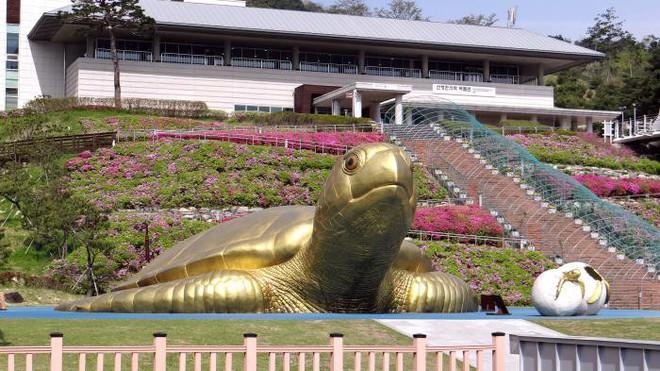 Khám phá Sancheong, vùng đất quê hương của HLV Park Hang-seo - Ảnh 7.