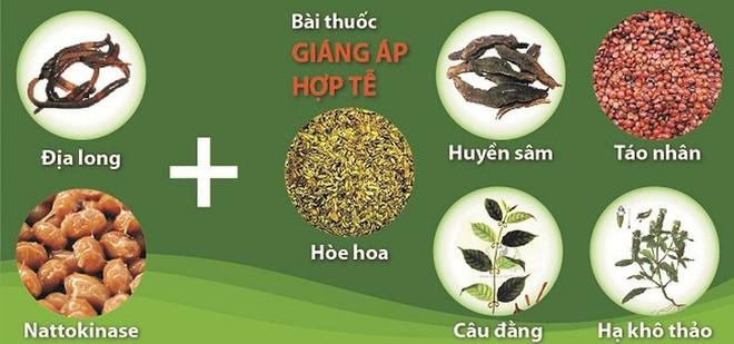 Phát hiện hoạt chất quý ngừa tai biến có trong hoa hòe - Ảnh 3.