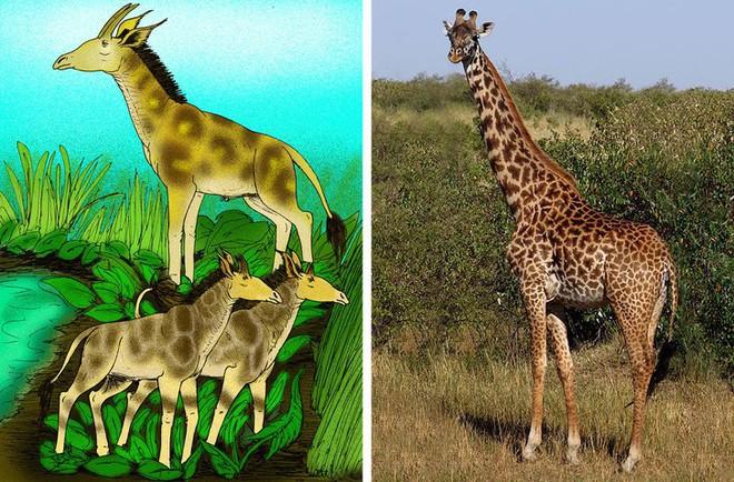 Chẳng ai ngờ được 9 loài vật cực quen thuộc này thời xưa lại có ngoại hình dị đến mức không thể tin nổi - Ảnh 3.