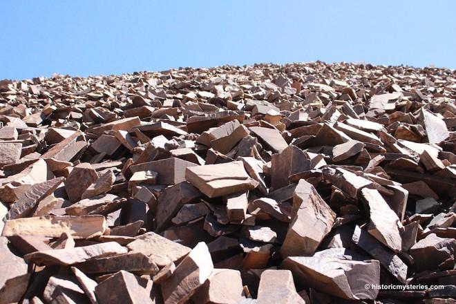 Kỳ lạ cây cổ thụ 5.000 năm, nhiều tuổi hơn kim tự tháp Ai Cập, vẫn sống khỏe - Ảnh 4.