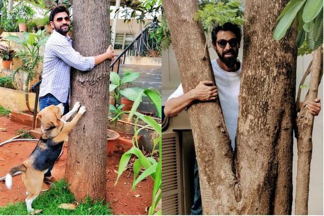 Có yêu đến mấy cũng đừng chạm vào cây, vì chúng thật sự không thích thế - Ảnh 5.