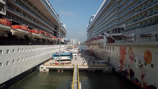 Ảnh: Cận cảnh hai du thuyền 5 sao chở gần 8.000 du khách quốc tế đến Hạ Long - Ảnh 2.
