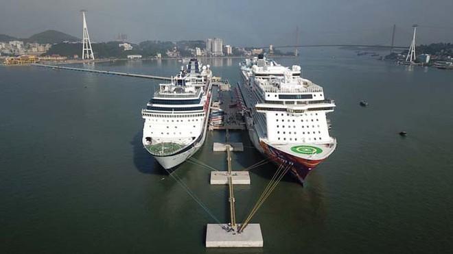 Ảnh: Cận cảnh hai du thuyền 5 sao chở gần 8.000 du khách quốc tế đến Hạ Long - Ảnh 4.