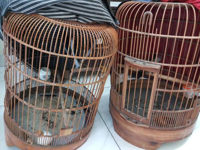 Hiệp sĩ Sài Gòn truy đuổi 2 thanh niên đi xe tay ga trộm chim - Ảnh 1.