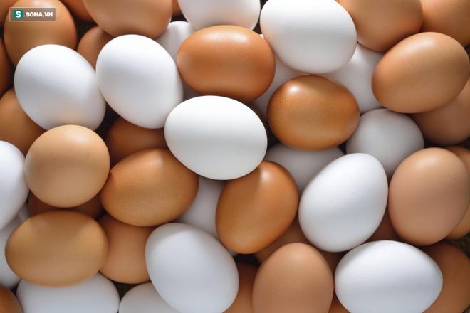 Trứng gà chạy bộ có tốt hơn trứng gà nuôi nhốt: Bạn có đang mua trứng đúng giá trị thật? - Ảnh 3.