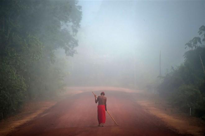 Hành trình đáng ngạc nhiên tiết lộ mặt trái ở rừng Amazon - Ảnh 2.