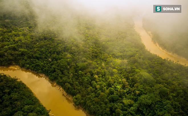Hành trình đáng ngạc nhiên tiết lộ mặt trái ở rừng Amazon
