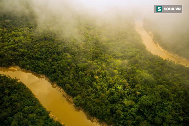 Hành trình đáng ngạc nhiên tiết lộ mặt trái ở rừng Amazon - Ảnh 1.