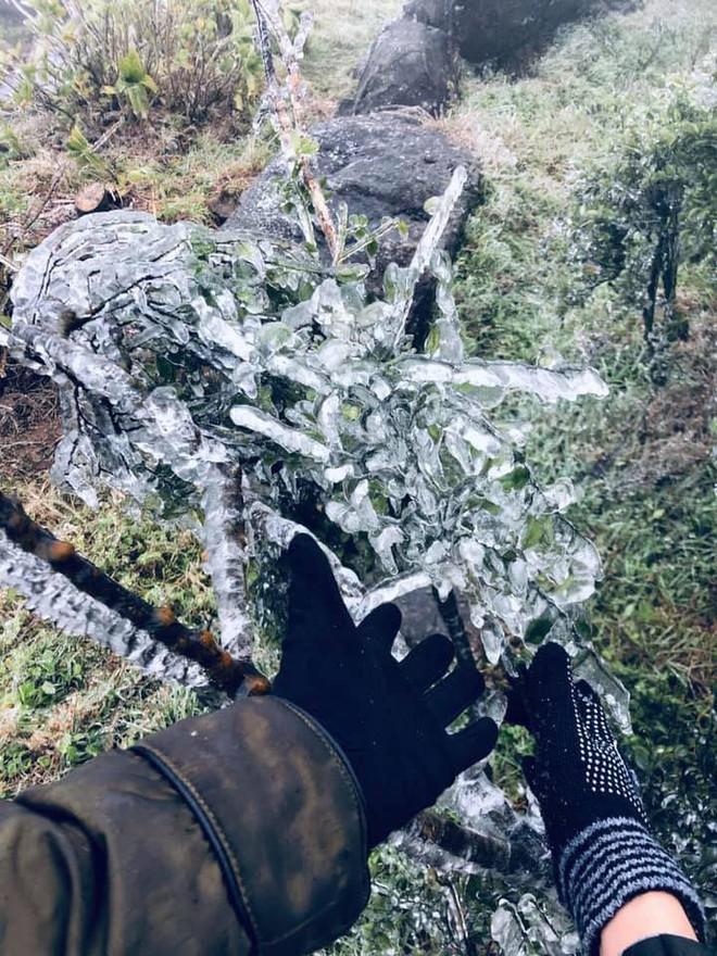 Hình ảnh băng tuyết bao phủ đỉnh Mẫu Sơn trong ngày rét đỉnh điểm - Ảnh 3.