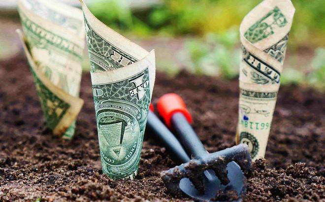Tại sao phải khổ sở kiếm tiền? Đây chính là câu trả lời chuẩn xác, đáng ngẫm nhất!