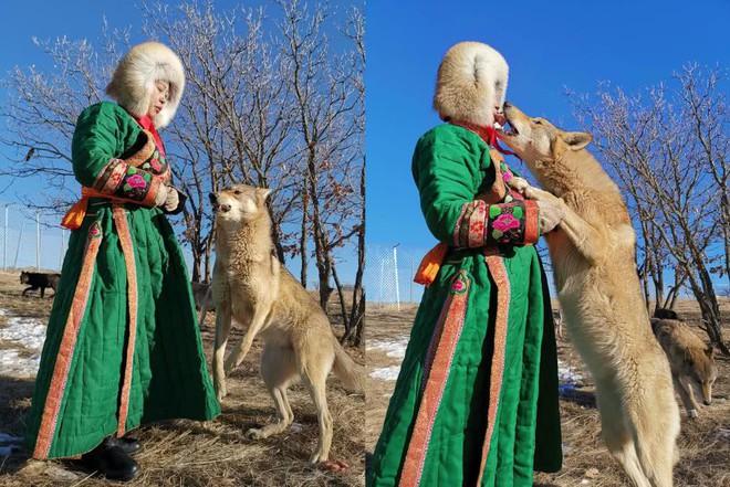 Cô gái Mông Cổ với dàn thú cưng độc 8 con sói, 3 bạn trai đều đòi chia tay vì sợ cãi nàng sẽ bị ăn thịt - Ảnh 5.