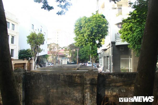 2 kẻ đi ô tô Innova trèo tường, chặt trộm hai cây sưa đỏ ở Bảo tàng dân tộc học Việt Nam - Ảnh 1.