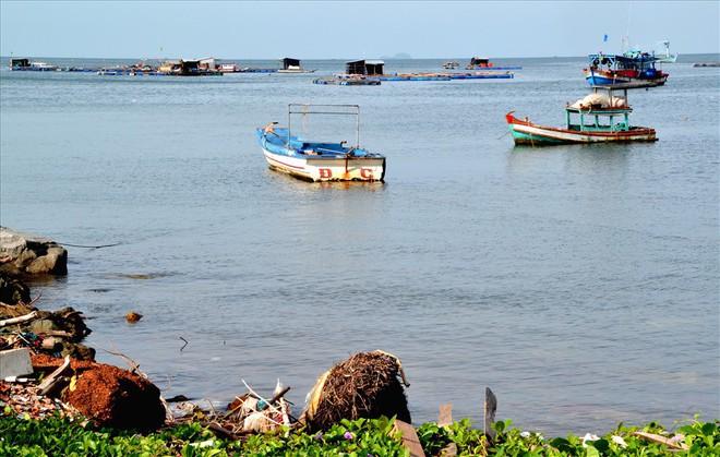 Nghề nuôi cá bạc tỷ ở Sơn Hải - Ảnh 3.