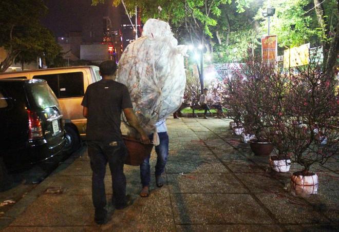 Sát tết hoa còn tồn nhiều, chủ vựa ở Sài Gòn treo biển than thở sao vào chụp hình hoài vậy - Ảnh 2.
