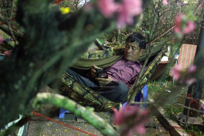 Sát tết hoa còn tồn nhiều, chủ vựa ở Sài Gòn treo biển than thở sao vào chụp hình hoài vậy - Ảnh 9.