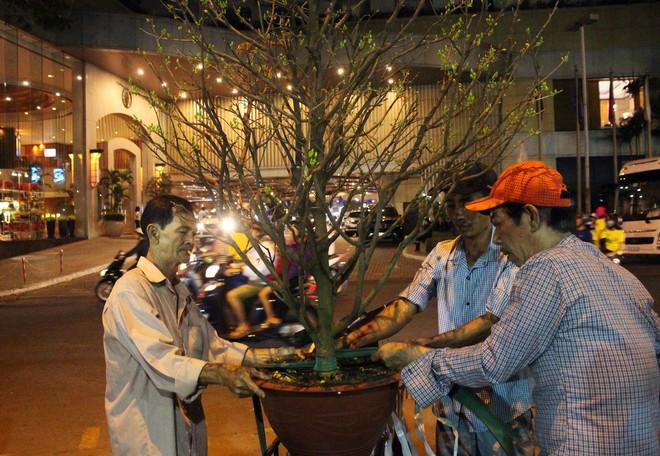 Sát tết hoa còn tồn nhiều, chủ vựa ở Sài Gòn treo biển than thở sao vào chụp hình hoài vậy - Ảnh 3.