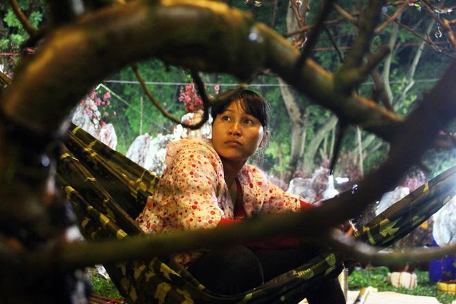 Sát tết hoa còn tồn nhiều, chủ vựa ở Sài Gòn treo biển than thở sao vào chụp hình hoài vậy - Ảnh 5.