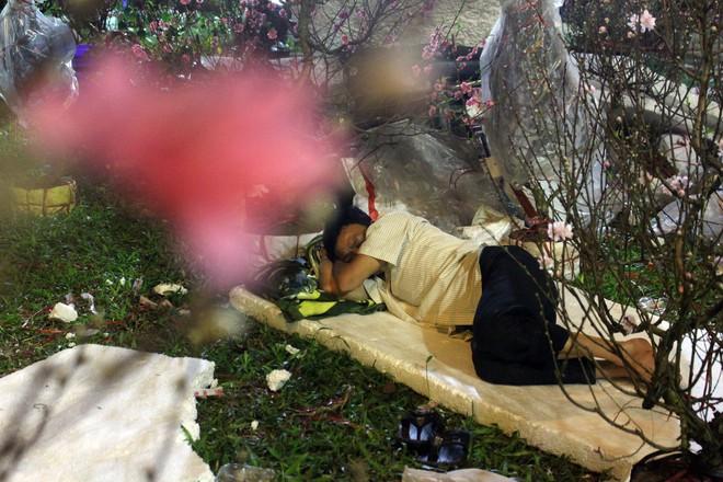 Sát tết hoa còn tồn nhiều, chủ vựa ở Sài Gòn treo biển than thở sao vào chụp hình hoài vậy - Ảnh 16.