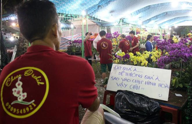Sát tết hoa còn tồn nhiều, chủ vựa ở Sài Gòn treo biển than thở sao vào chụp hình hoài vậy - Ảnh 4.