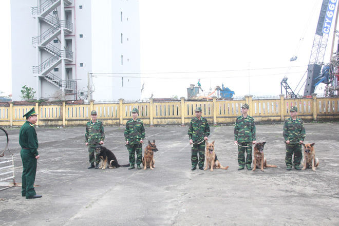 Biệt đội chó đặc nhiệm và chuyện chưa kể về vật thể lạ khi đón Tổng thống Trump - Ảnh 5.