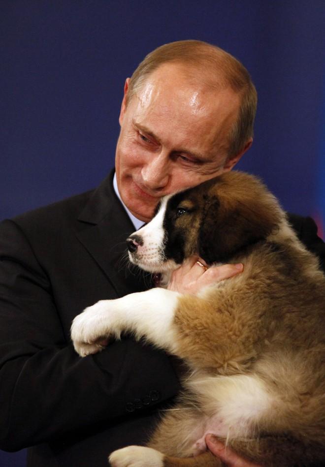 Tiết lộ bí mật thú vị về những chú chó của Tổng thống Nga Putin - Ảnh 3.