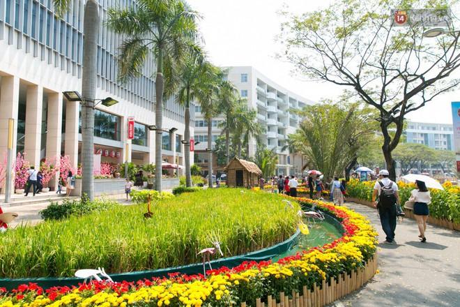Ngày đầu tiên của kỳ nghỉ Tết âm lịch: Mặc trời nắng nóng, hàng trăm người dân ở Sài Gòn vẫn kéo nhau lên phố chụp ảnh - Ảnh 25.