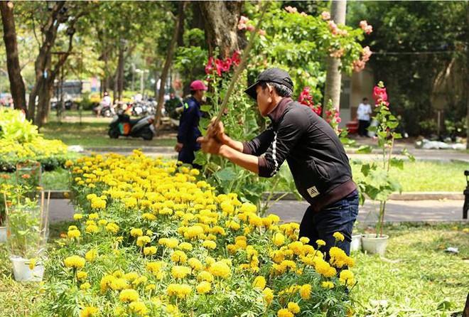 Đập nát hoa để không bị ép giá: Vùi dập cái đẹp bằng sự tức giận - Ảnh 1.