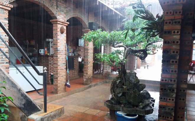 Gia Lai có cơn mưa 'vàng' đầu mùa, người dân mừng rỡ vì lộc trời cho
