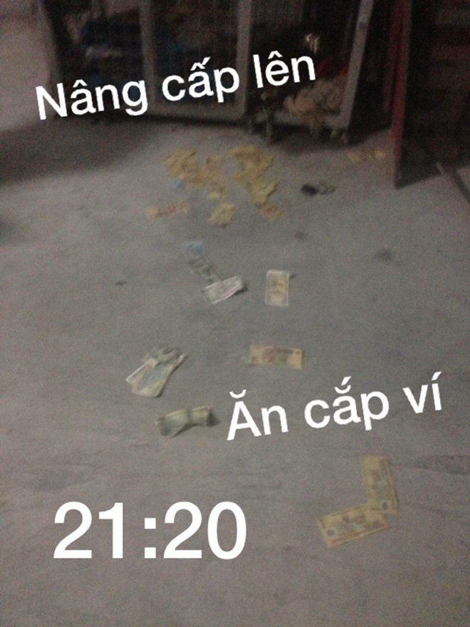 Boss dùng tiền lì xì của sen để trải thảm bước đi từ nhà vào chuồng cho sang chảnh - Ảnh 2.