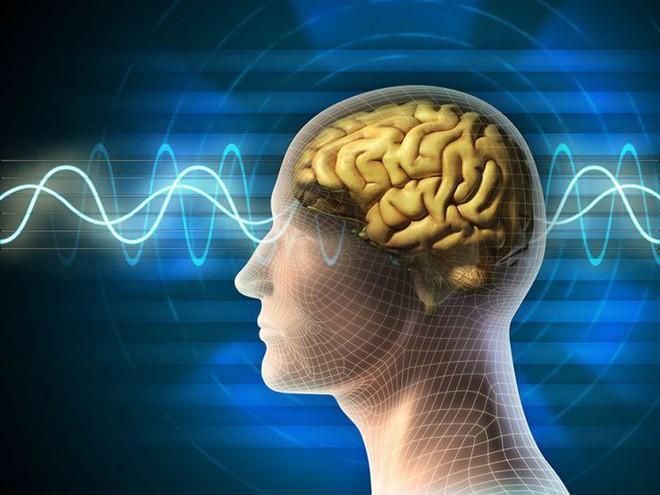 Điều gì xảy ra trong não khi bạn ngủ mơ? - Ảnh 1.