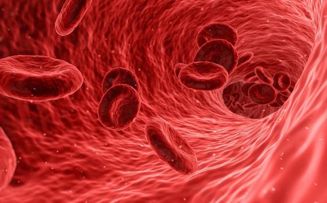 Tại sao đang trẻ khỏe, bước vào trung niên lại dễ mắc bệnh tim: Phải ngăn chặn thế nào?