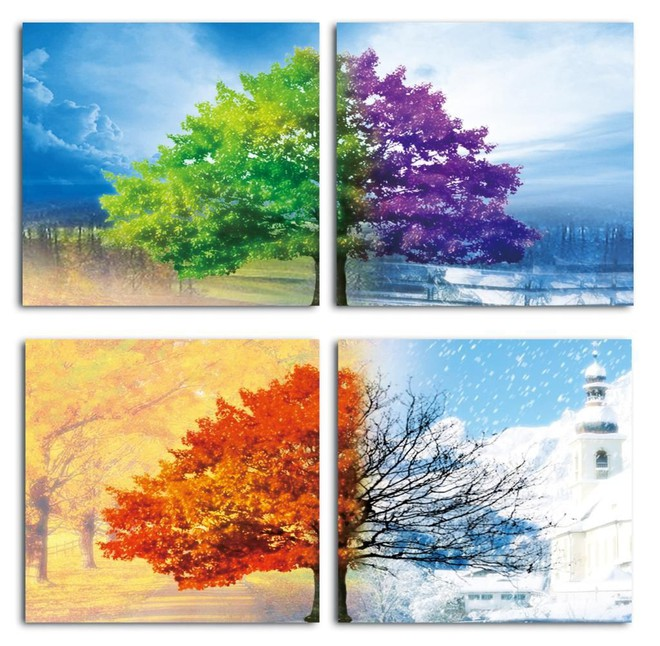 Một năm có mấy mùa? và câu trả lời sai sự thật của Khổng Tử giúp nhiều người hưởng lợi - Ảnh 1.