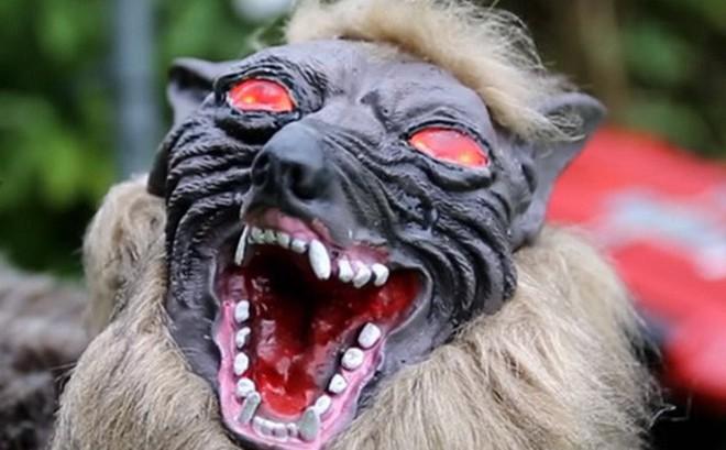 Nông dân Nhật Bản dùng robot chó sói để bảo vệ mùa màng nhưng thoạt nhìn trông thật khiếp sợ